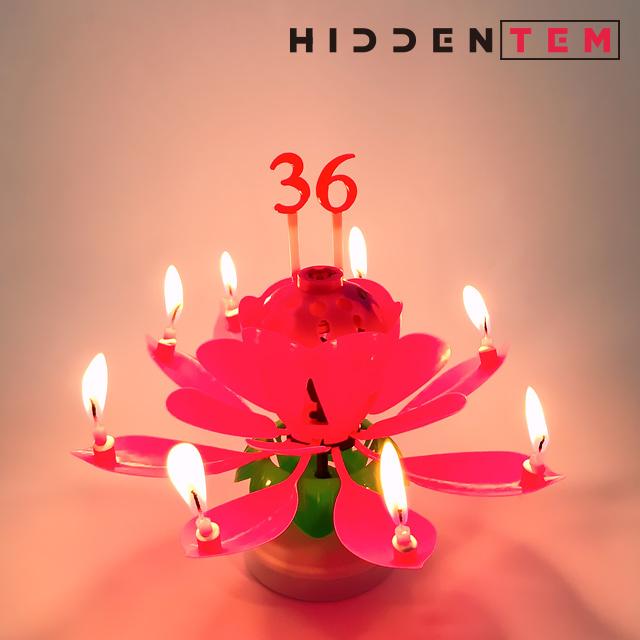 히든템 생일축하 회전 멜로디 숫자 연꽃초, 블루