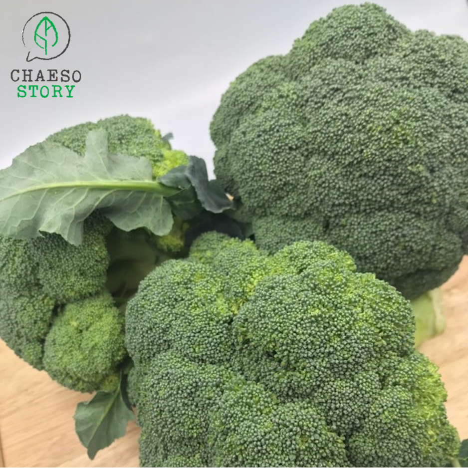 [CHAESO STORY] 브로콜리 2kg, 1box