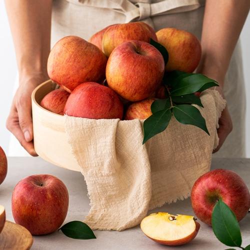 [100박스 한정] 아삭아삭 바른과일 사과 3kg 5kg, [100박스 한정] 가정용 흠집사과 2kg (랜덤과)