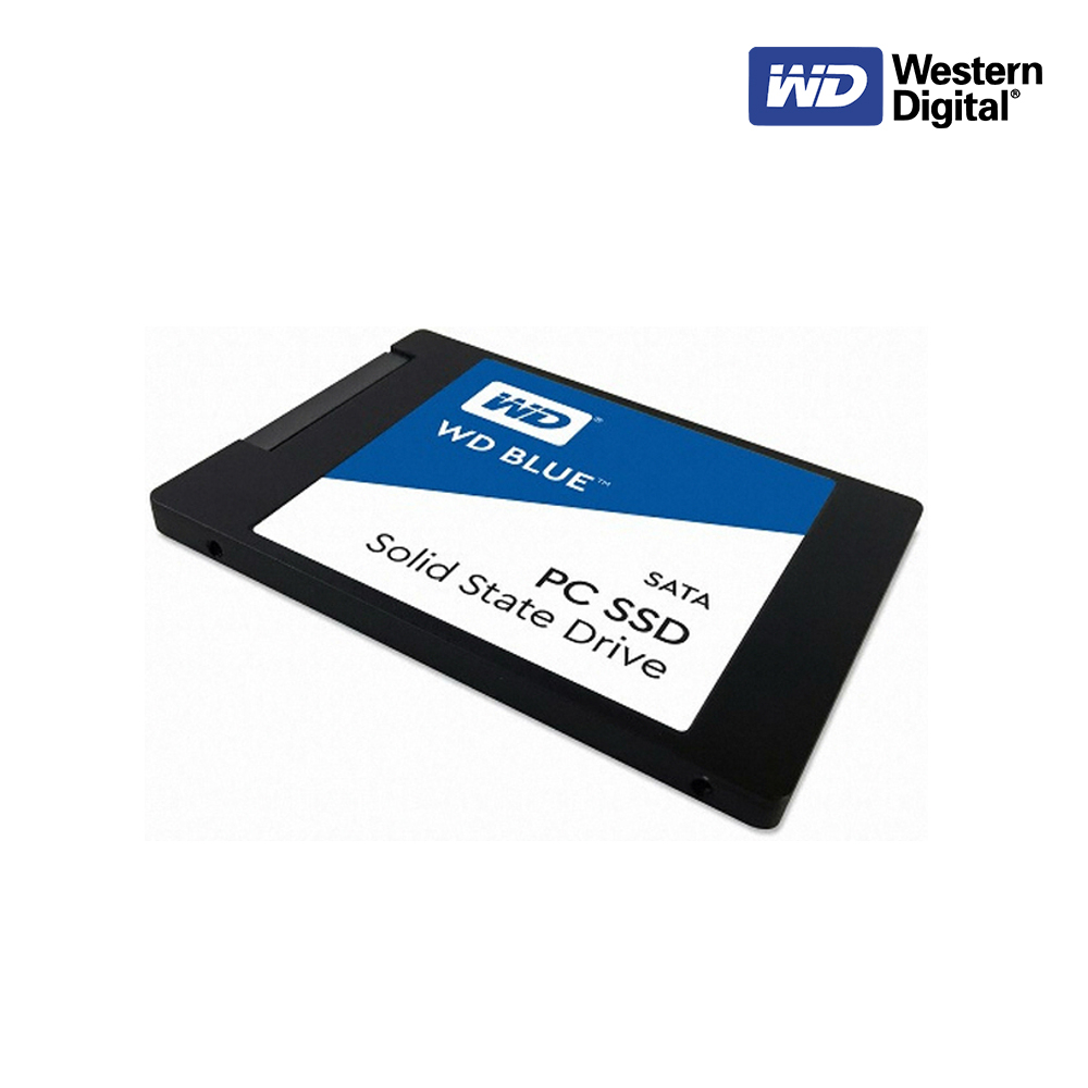 [WD] 웨스턴디지털 Blue 2.5인치 SSD (250GB), 500GB