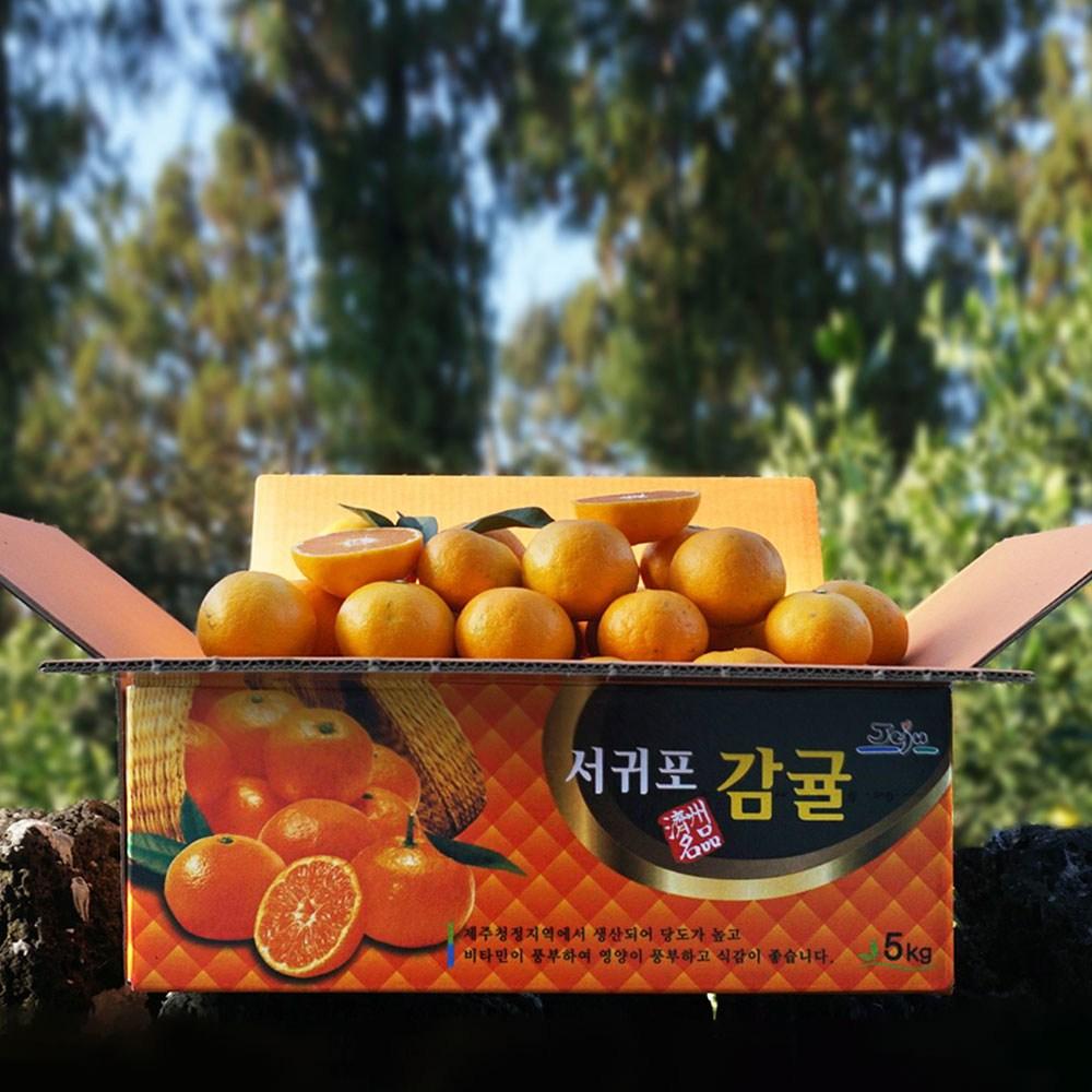 [귤담원] 귤담원 제주 제철 감귤, 1박스, 03.감귤 3kg 로얄과(S/M)