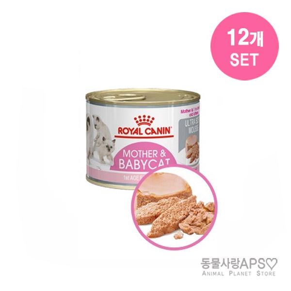 로얄캐닌 마더앤 베이비캣 캔 195g x12개(set), 단품
