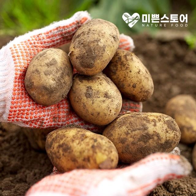 미쁜스토어 포실포실한 2020년 햇 감자 3kg 5kg 10kg 20kg, 1개, 감자 3kg 중(통구이용)