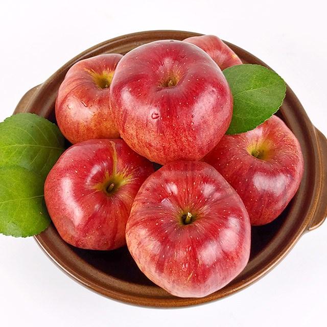 클라스가 다른 경북 햇 홍로 사과 가정용 5kg, 1박스, 경북 햇 홍로 사과 가정용 5kg 16-18과