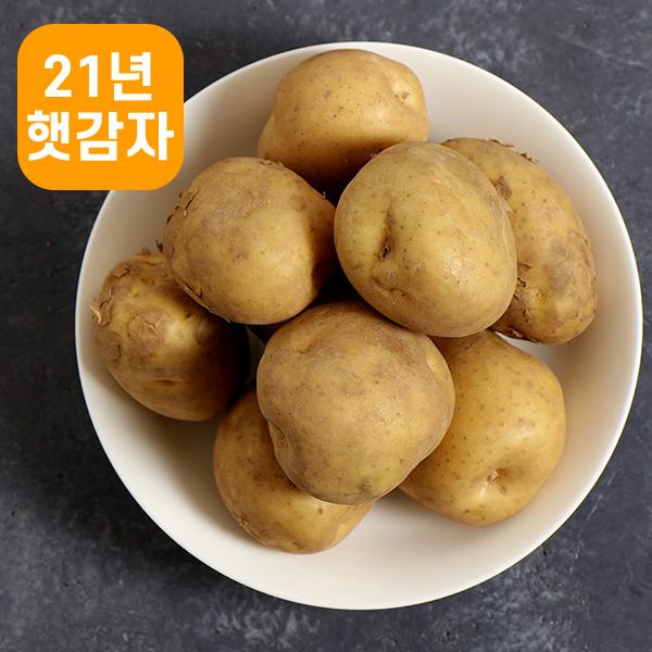 포슬포슬 맛있는 감자, 중 10kg