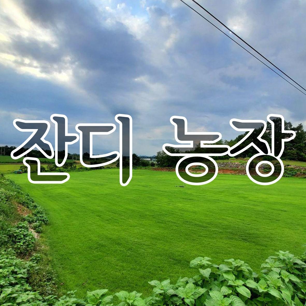 잔디농장 천연잔디 18cm * 25장