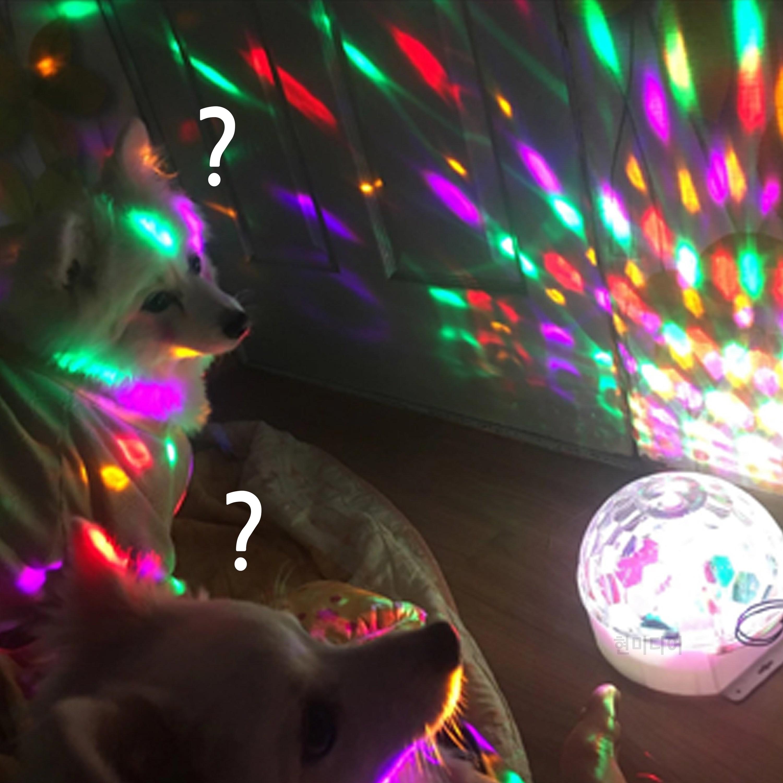 달콤사운드 LED 가정용 미러볼 노래방 조명