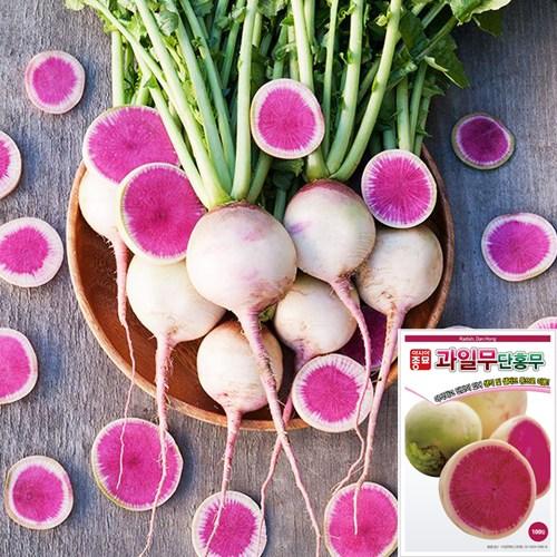 세경팜 수박무 과일무 씨앗 100립