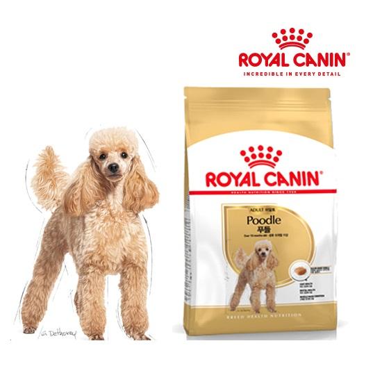 로얄캐닌 푸들 어덜트 강아지 사료 3Kg, 1팩-2-339151960