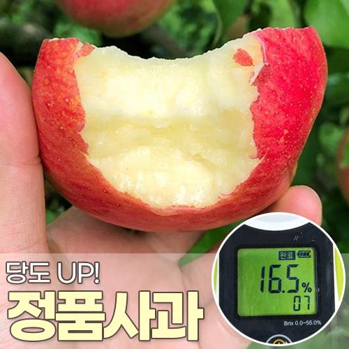 깐깐한 당도선별 햇사과 정품 2.5/5/10KG, 04.중과 정품 2.5kg(7~9과)