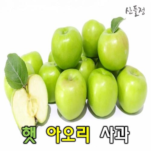 경북사과 햇 아오리 사과10kg 5kg 3kg [산지직송] 산들정, 1box, 03. 아오리 5kg (21~26과 내외) 가정용 흠과