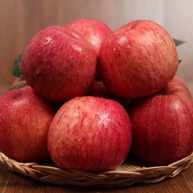 이베따 아침에 먹는 정품사과 10kg, 정품사과 10kg 실속형(51~60과), 51~60과
