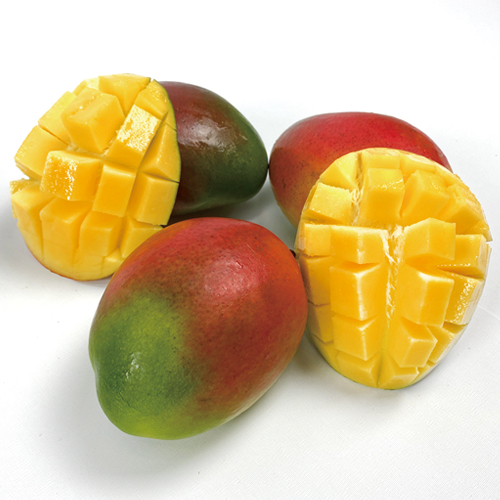 [누리후르츠] 브라질 애플망고 8과 추석 과일 선물세트