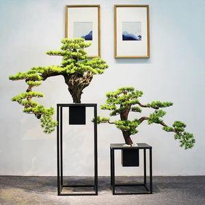 ksw92919 복 재물 상 징 행운나무 ln117 인테리어장식품, 1, B|구매