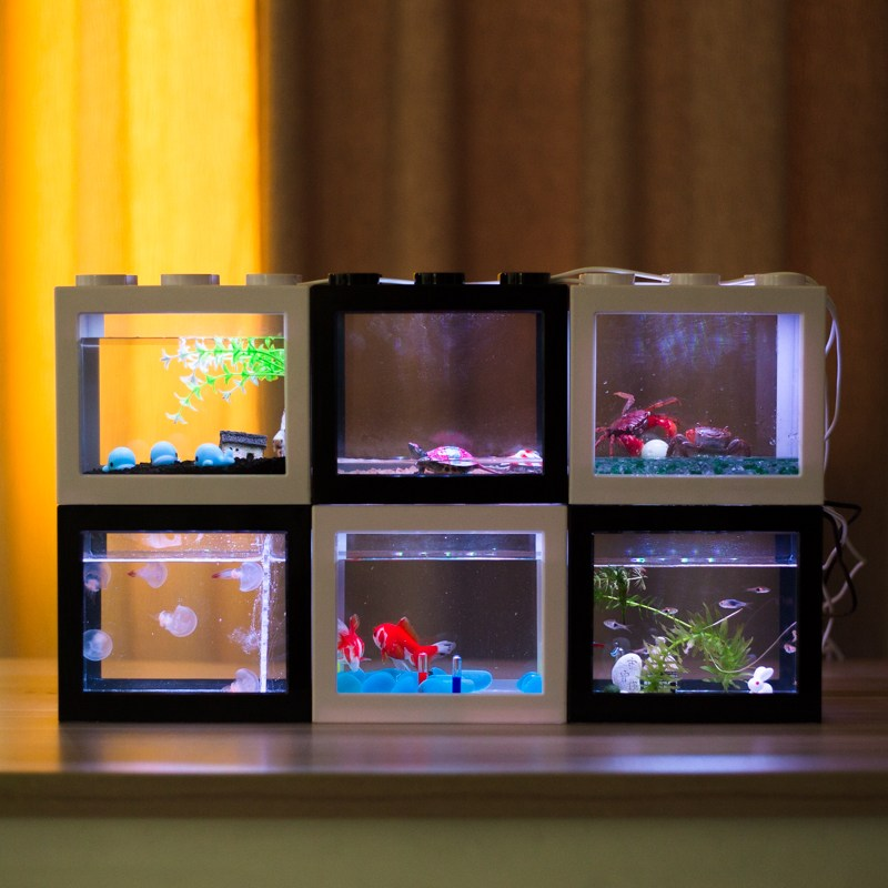 LED 블럭 사육장 거북이 해파리 소라게 키우기