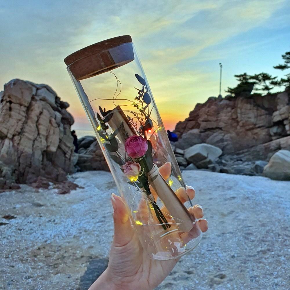 [라알레그리아] [당일발송가능] 특별한 편지지 세트 꽃 LED 특이한 유리병편지 생일 크리스마스 선물 여자친구 결혼 100일 기념일 감동 키스데이, 분홍 장미