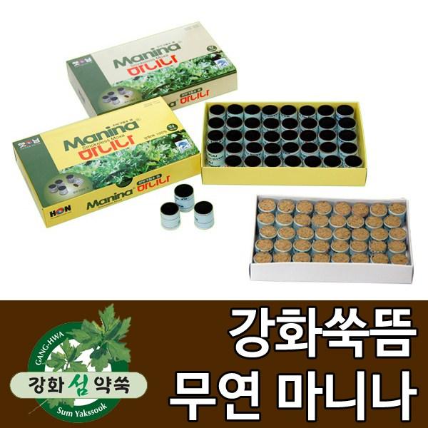 강화도토박이 무연쑥뜸 마니나(약) 40개입 붙이는쑥뜸, 1통