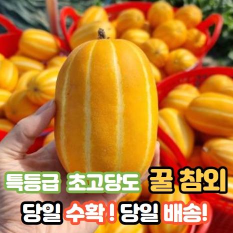 [당일수확+당일배송] 성주 꿀 참외 프리미엄 로얄과 백화점상품 2/3/5/10kg, 10kg