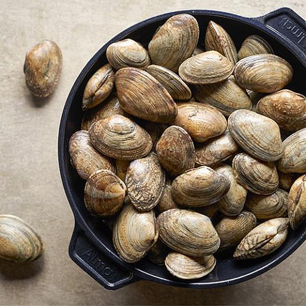 삼삼해물 삼삼 자연산 생물 왕바지락2kg, 단품