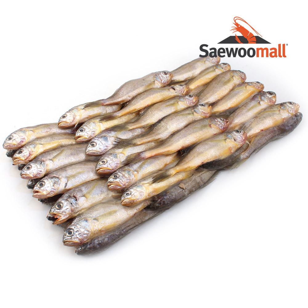 새우몰 알배기 참조기 1박스 2.6kg 50-52미 알비율50%, 1개