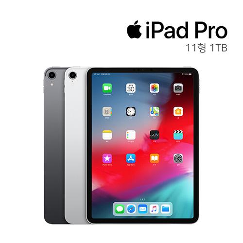 애플 아이패드 프로 1세대 2019 11인치 1TB, 실버