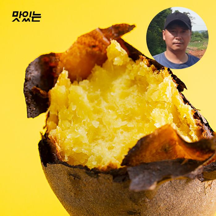 맛있는 해남 햇 꿀 밤고구마, 고구마 10kg 한입