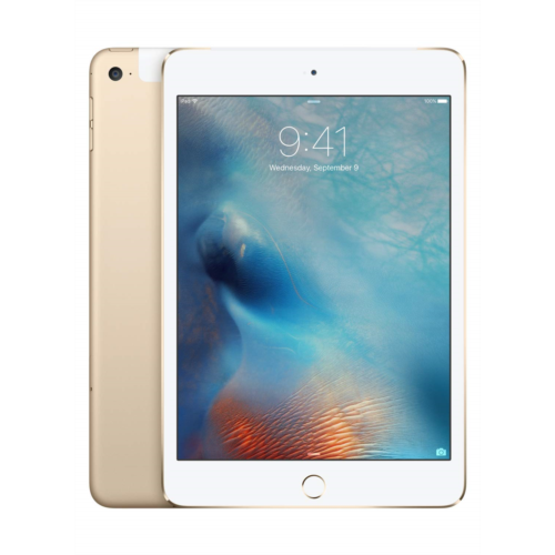 X891373 Apple iPad mini 4 (Wi-Fi 128GB) - Space Gray (Previous Model), 128GB