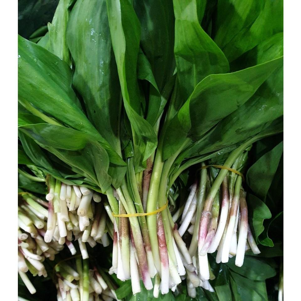 자연산 울릉도 생 명이나물 1kg 산마늘 명의나물 생채 장아찌 잎명이