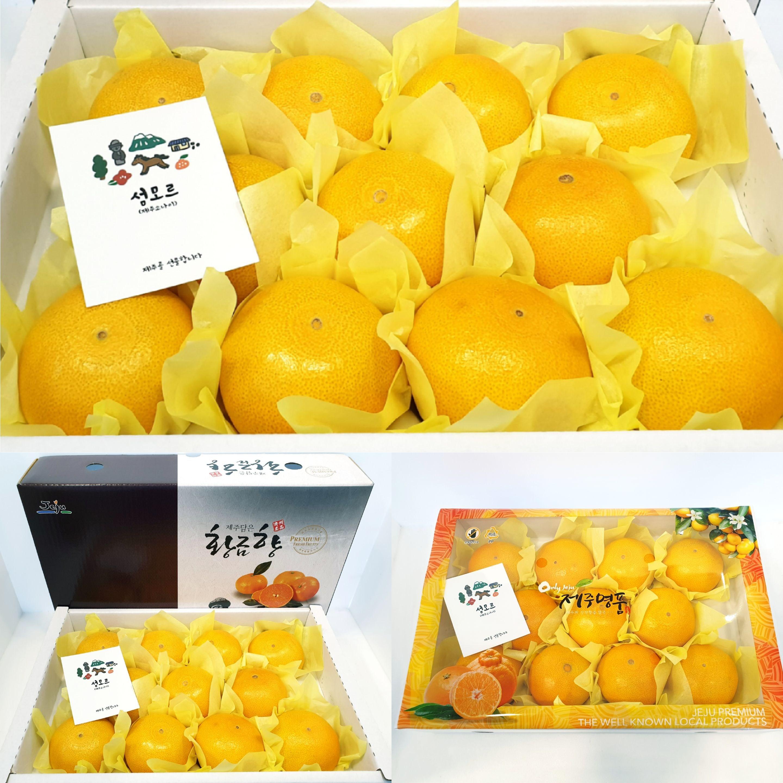 제주 황금향 [제주소나이] 3kg 중/대과 개별포장 (무료배송), 1박스, 황금향 3kg 12~14수 (중대과)