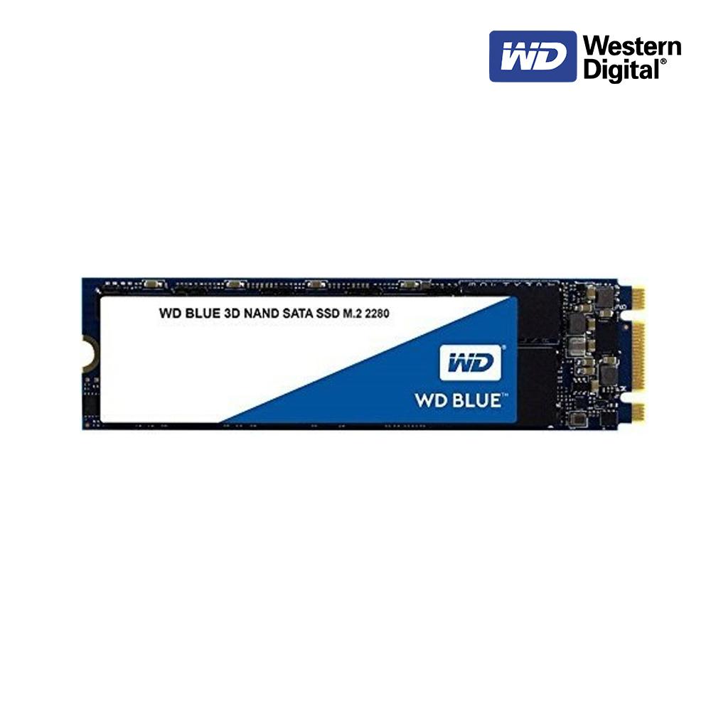 [WD] 웨스턴디지털 Blue M.2 SSD (250GB), 500GB