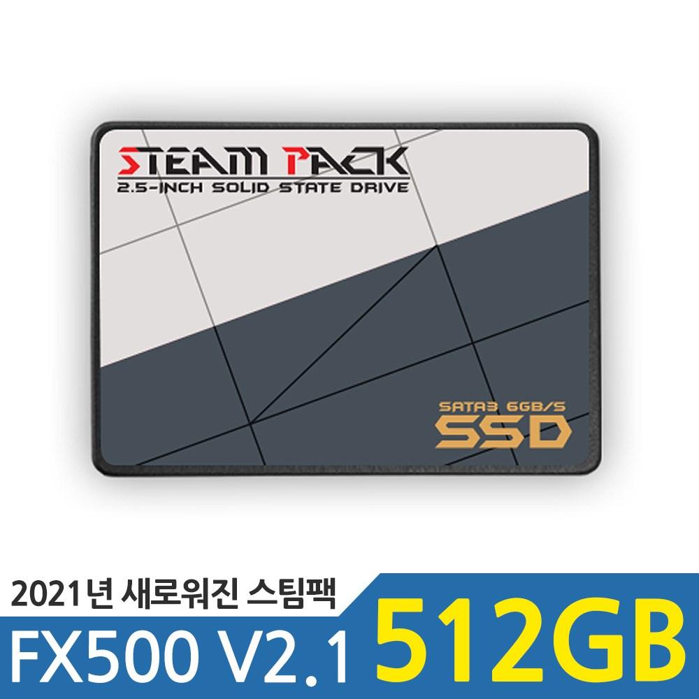 블루트레이더스 STEAM PACK FX500-5G 512GB SSD