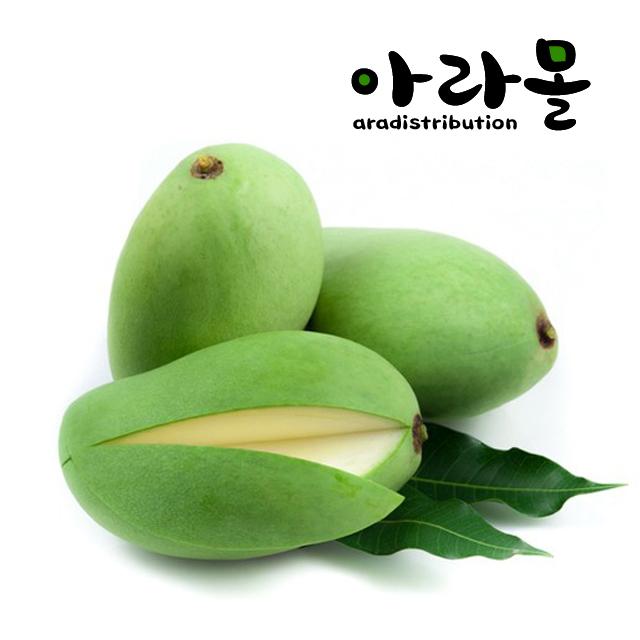 아라몰 태국 그린망고 (Thailand Green Mango), 20개, 5.0kg (250g 내외) [선물포장]