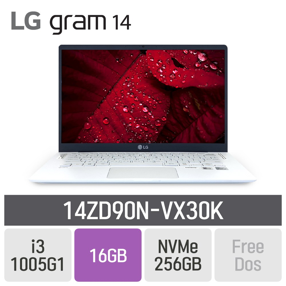 LG 그램14 2020 14ZD90N-VX30K, 16GB, SSD 256GB, 미포함