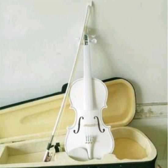 빅피플 입문용 초보 화이트 바이올린 XX124