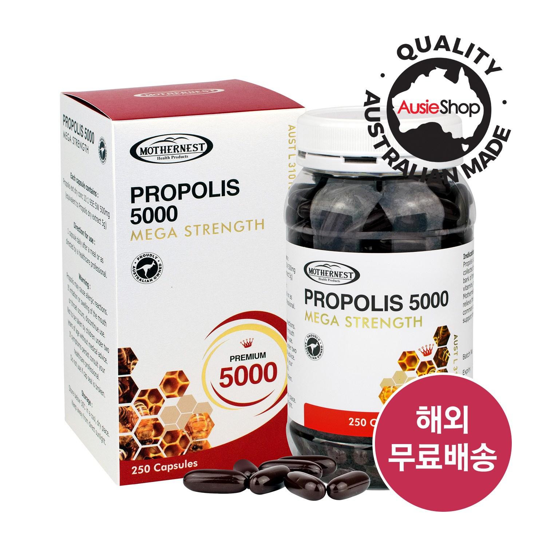마더네스트 호주직구 프로폴리스 5000mg 250정 (사은품증정) 고함량 플라보노이드 면역력 건강식품, 1개, 250