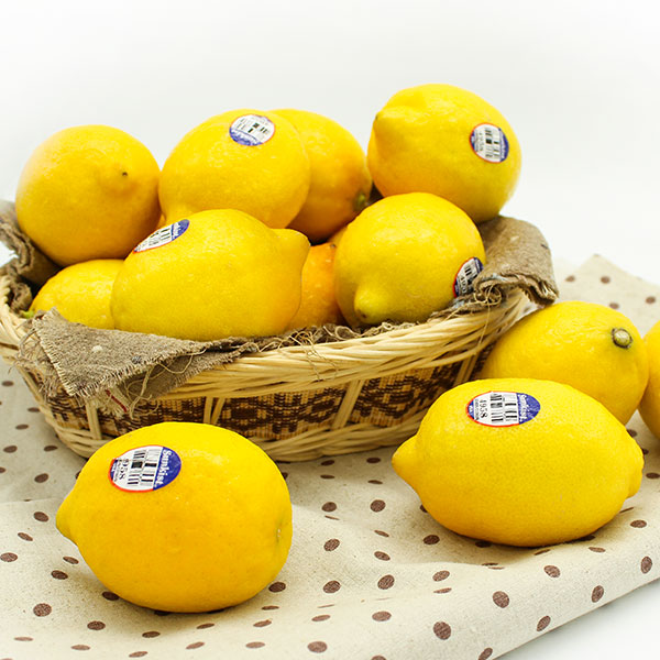 모닝 팬시 레몬 2.4kg 18-22과, 단일상품
