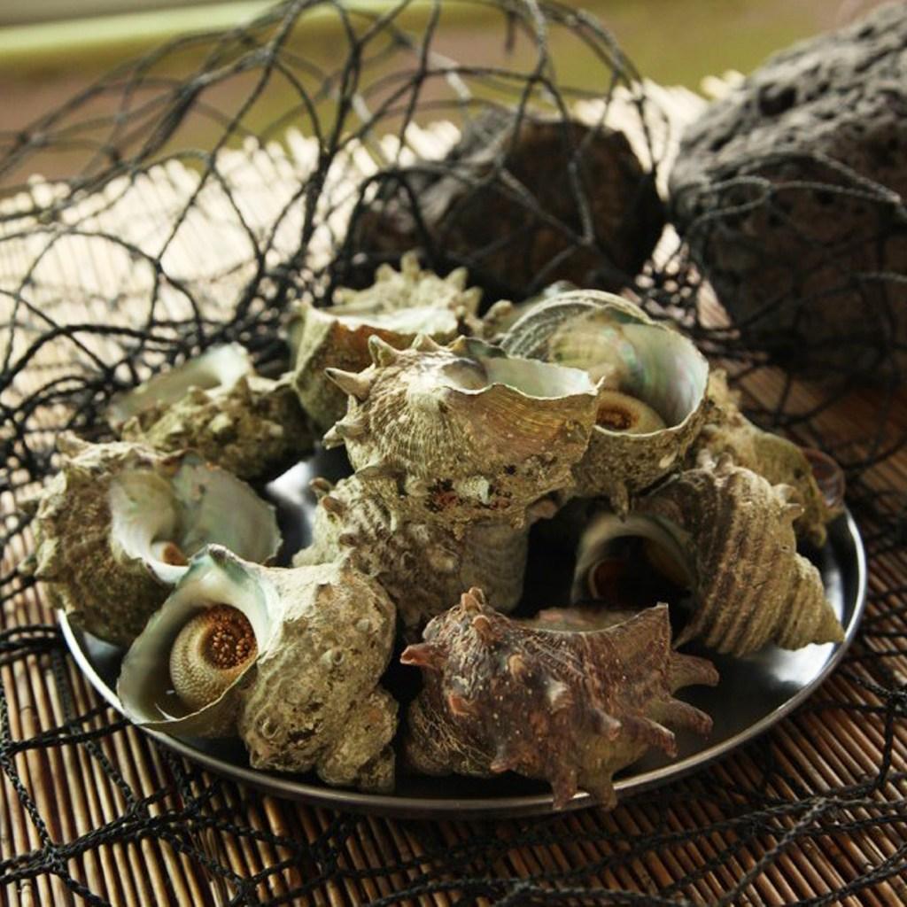 제주 해녀가 채취한 자연산 뿔소라 2kg(14~20미), 1개, 2kg