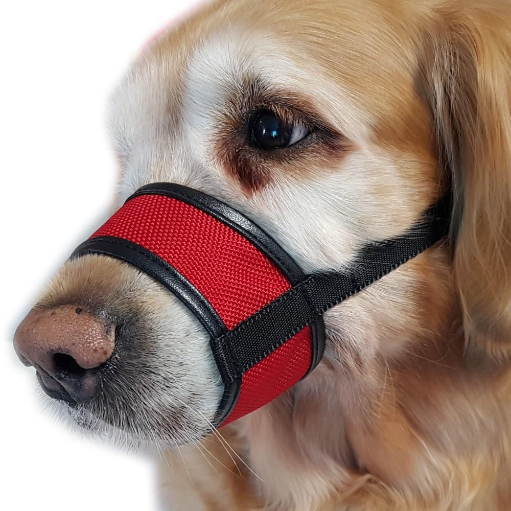 까망가게 강아지 입마개 대형견 중형견 소형견 산책 훈련용품, 1개, 빨강6호(입둘레22cm)