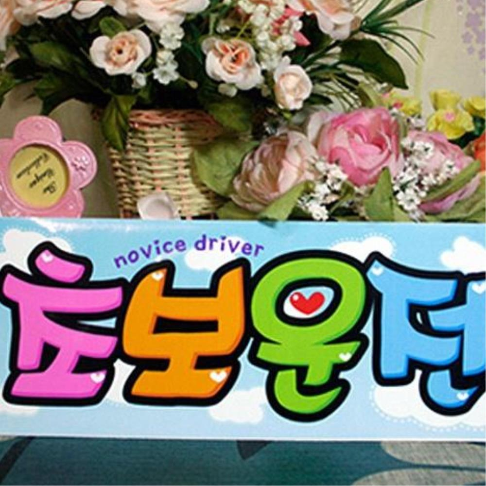 HKC86923 차량 리무버스티커-초보운전 스카이 초보운전문구, 1