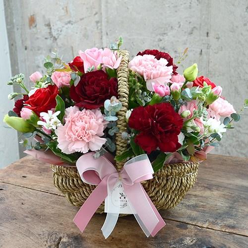 데일리플라워 전국꽃배달 생화 꽃바구니, 5믹스_감사합니다