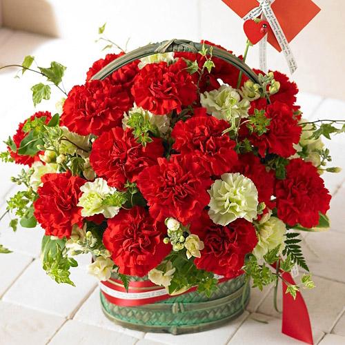 데일리플라워 전국꽃배달 생화 꽃바구니, 선택3.빅레드카네이션