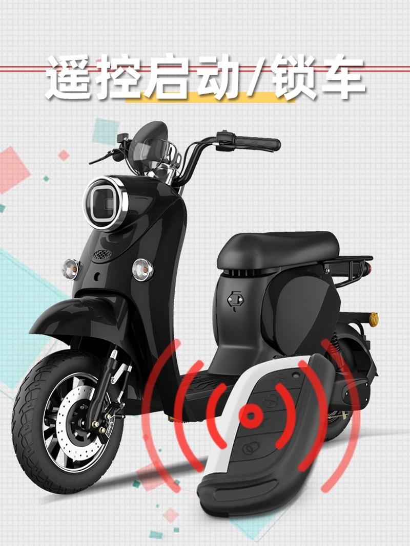 접이식 전기자전거 여성 3인용 배달용 전동자전거 전기바이크 새로운 표준 2인용 전동스쿠터, 배터리없음, 48V