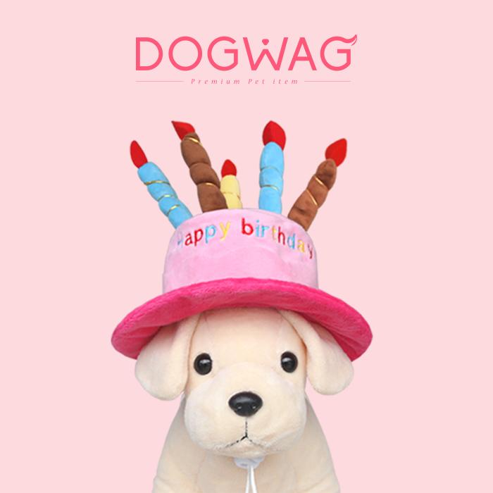 도그웨그 케이크 모자 강아지 고양이 생일 파티 용품, 블루