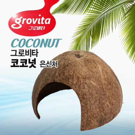 그로비타 코코넛 은신처 (랜덤) 소라게은신처 새우 가재