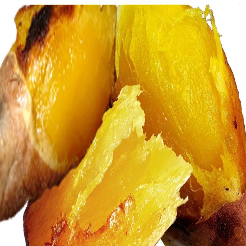 농부마음 2020년 햇 꿀고구마 3~10kg(미숙성 밤고구마 맛), 꿀고구마 5kg (중/한입), 1박스