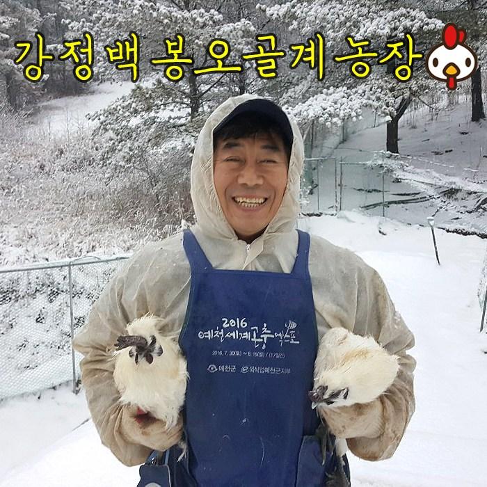 [강정백봉오골계농장]유정란 백봉 오골계 계란(부화용 자연방사 무항생제), 백봉오골계란 20구