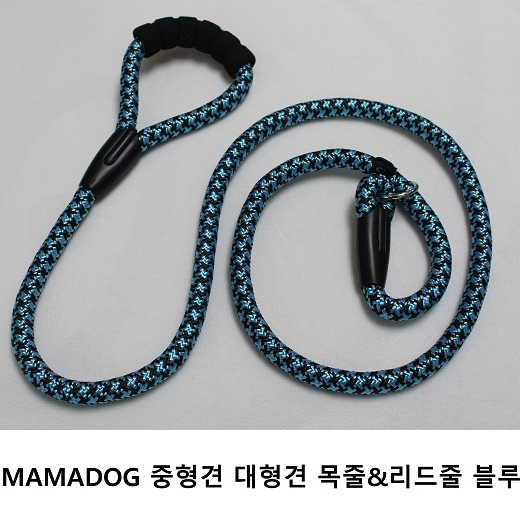 MAMADOG 중형견 대형견 목줄&리드줄, 1개, 블루