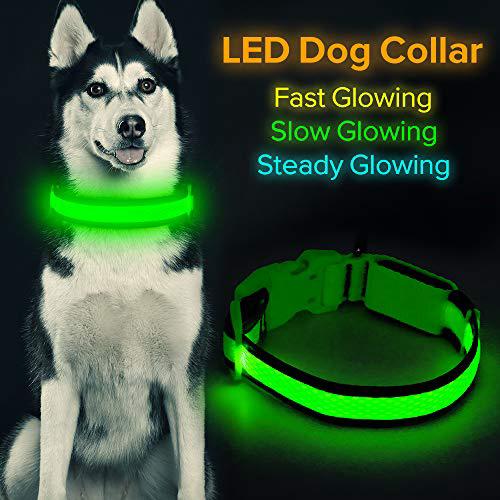 "HiGuard LED 개 목걸이 USB 충전식 빛나는 애완 동물 목걸이 야간 안전 LED가 나일론 웨빙으로 밝아 소형 중형 대형 개에 적합 (소형 목걸이 [8 ""-14""인치, 1set"