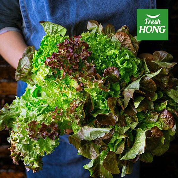 홍반장 유기농 쌈채소 샐러드 채소 1kg, 1박스, 샐러드채소 1kg