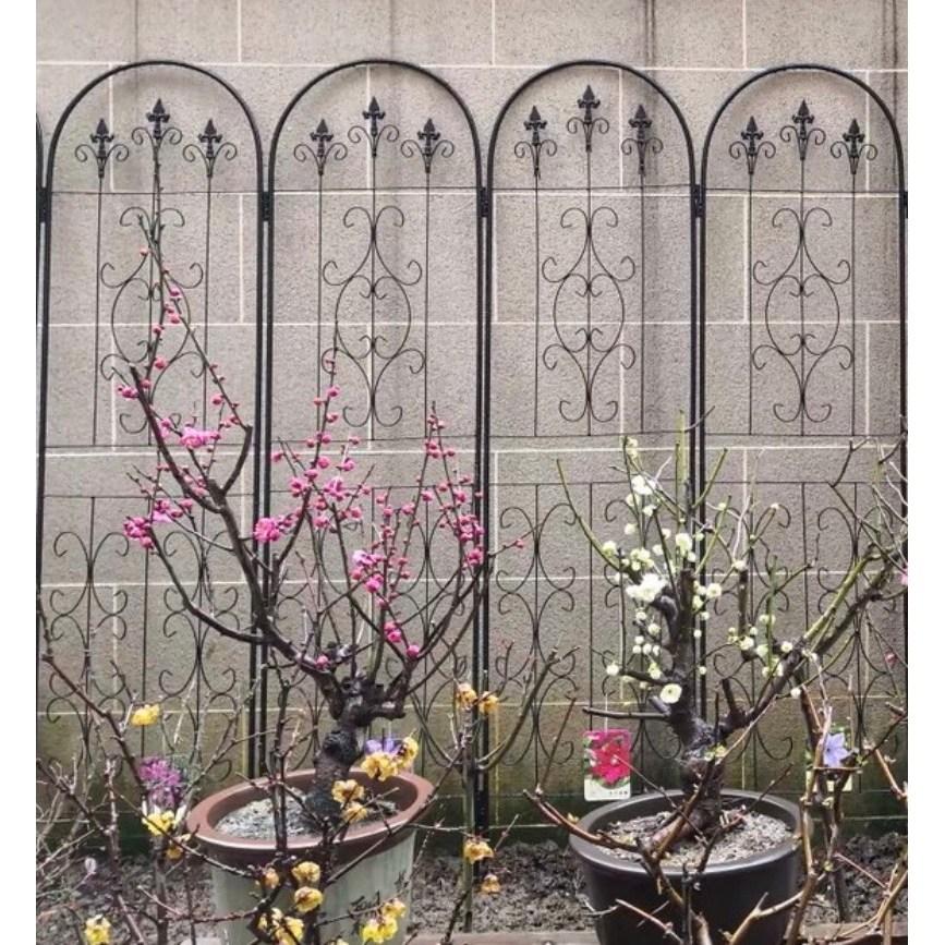 모던 철제 아치 넝쿨식물지지대 아치문 화단울타리 테라스꾸미기 옥상펜스 장미가든아치 정원 421, 신형 검정색 2.2m*50cm, 크다